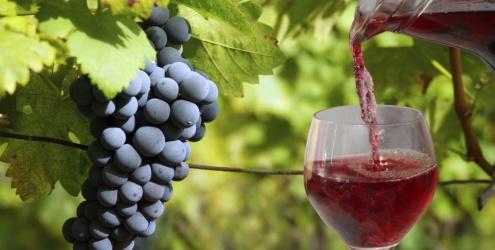 Conheça o poder do suco de uva integral